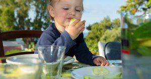 бебешката храна през лятото